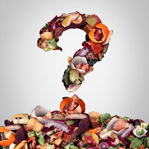 food - waste